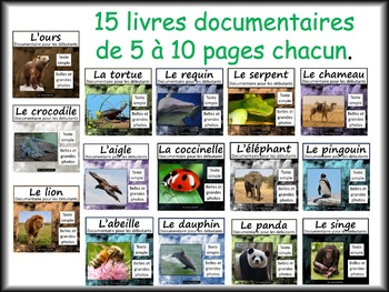Les animaux: Une collection de livres documentaires pour les débutants
