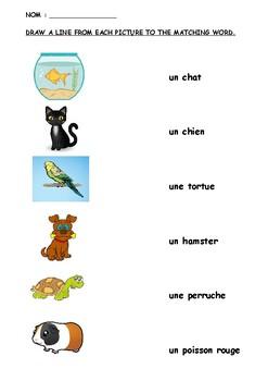 Les animaux de compagnie / PETS