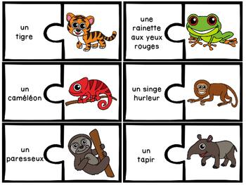 Les animaux de la forêt tropicale - 25 puzzles (casse-tête) - Rainforest animals