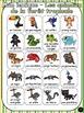 Animaux de la forêt tropicale - mur de mots et lexique (27 mots)- French animals