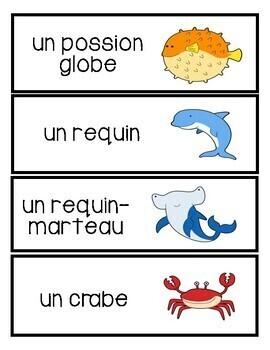 Les animaux vocabulaire