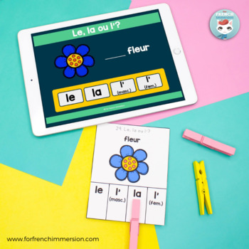 Articles définis singuliers CLIP CARDS: French singular definite articles
