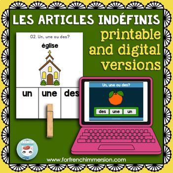 Articles indéfinis CLIP CARDS: French indefinite articles