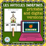 Articles indéfinis: French indefinite articles practice | Printable & Digital