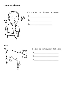 Les besoins humaines
