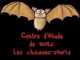 Les chauves-souris- centre d'étude de mots
