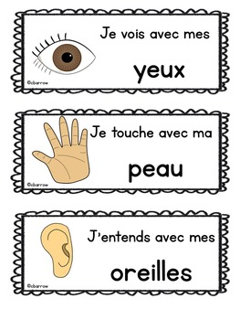 Les cinq sens - Five Senses Posters and Activities in French