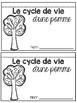 Les cycle de vie d'une pomme