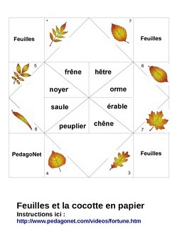 Les feuilles d'arbre