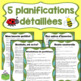 Les insectes: planifications et fiches d'activités mathématiques