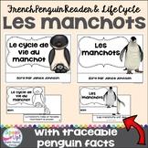 Les manchots ~ Le cycle de vie du manchot ~ French Penguin Reader & Lifecycle