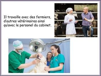 Le vétérinaire: un documentaire pour les débutants