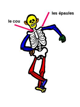 Les parties du corps (vocabulary presentation