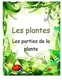 Les plantes- Jeu de fleur- French Vocabulary (Parts of the Plant)