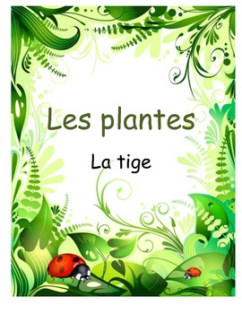 Les plantes- La tige (Investigation of function of the stem)