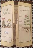 Les plantes - lapbook