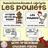 Les poulets ~ Le cycle de vie du poulet ~ French Chickens Reader & Lifecycle