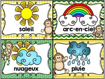 Les saisons et la météo - étiquettes pour la classe - thème: singes