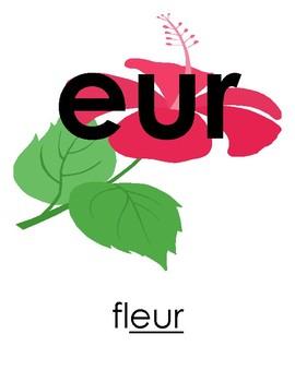 Les sons importants en Francais-affiches pour la salle de classe