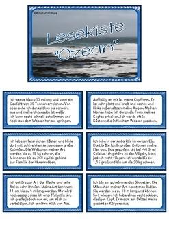 "Lesekiste ""Ozean"""