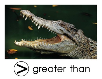 Less Than, Greater Than...Alligator Mouth Symbols