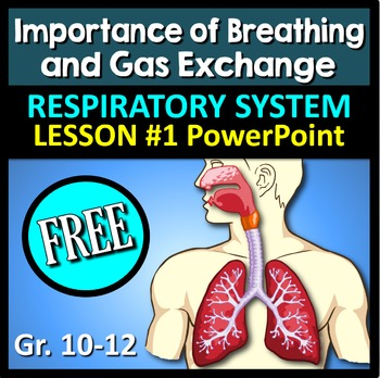Respiratory System Lesson 1 - Editable Interactive PowerPo