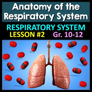 Respiratory System Lesson 2 - PowerPoint, Notes, Quiz & Crossword {EDITABLE}
