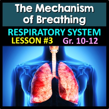 Respiratory System Lesson 3 - PowerPoint, Notes, Quiz & Cr