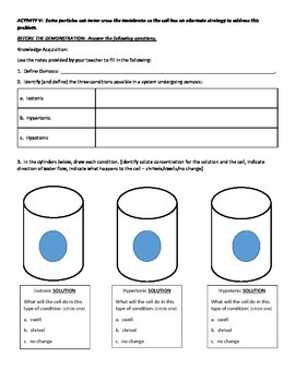 Lesson & Activity Bundle - Cell Transport