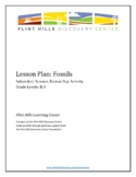 Lesson Plan - Fossils