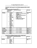 Lesson Plan Template for Special Education Classrooms(editable)