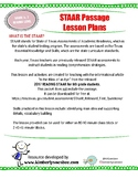 Lesson Plan for Main Idea and Supporting Detail Review