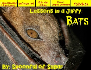 Lessons In a Jiffy: Bats (Shared/Guided Reading, Research
