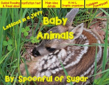 Lessons in a Jiffy: Baby Animals (Nonfiction/Shared/ Guide