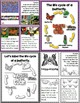 Lessons in a Jiffy: Butterflies (Guided/Shared Reading Boo