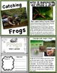 Lessons in a Jiffy: Frogs (Guided/Shared Reading, Research