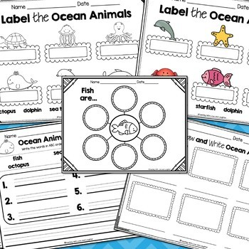 Let's Label, Draw, and Write About...Ocean Animals