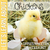 Life Cycle of a Chicken Nonfiction Science & ELA Unit