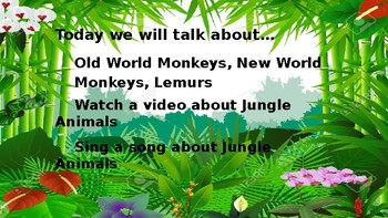 Let's Learn About Jungle Animals L1-8