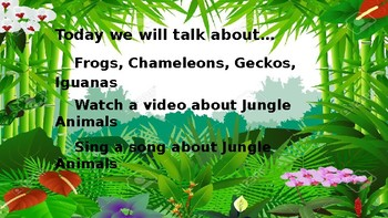 Let's Learn About Jungle Animals -L1- Frogs, Chameleons, Geckos, Iguanas