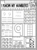 A Number A Day 0-50! Number Sense Printables for Primary