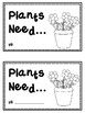 Let's Learn About PLANTS!  A bundle of plant activities