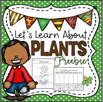 Let's Learn About Plants Freebie
