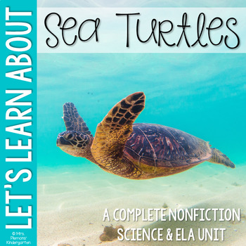 Life Cycle of a Sea Turtle Nonfiction Science & ELA Unit