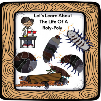 Let's Learn About The Life Of A  Roly Poly