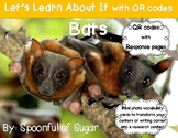 Let's Learn about it with QR Codes! Bats