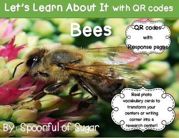 Let's Learn about it with QR Codes! Bees