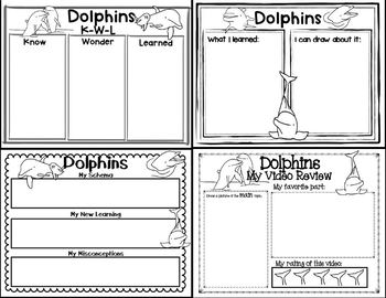 Let's Learn about it with QR Codes! Dolphins