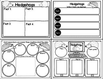 Let's Learn about it with QR Codes! Hedgehogs