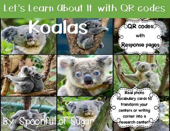 Let's Learn about it with QR Codes! Koalas